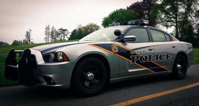 Wondrous Township Of Ocean Monmouth County Nj Police Jobs Entry Interior Design Ideas Tzicisoteloinfo
